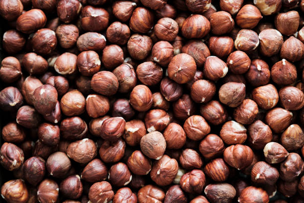 Full Frame of Shelled Hazelnuts stock photo