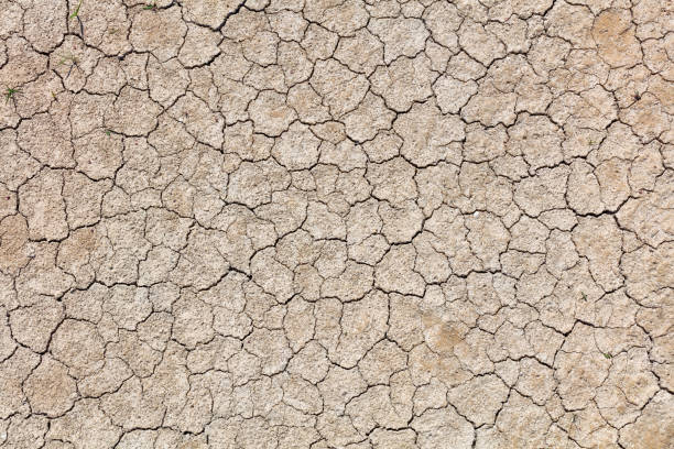 full frame photo of cracked earth - dry stock photos and pictures