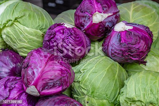 A Selection of Mixed Cabbages For Sale on a Market Stall