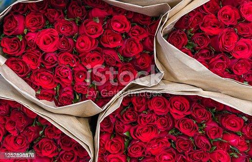 Full Frame Shot of Red Roses , Bangkok Province, Thailand, Asia