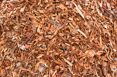 Full frame view of wood chip mulch