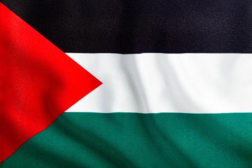 Full Frame Waving Palestinian Flag