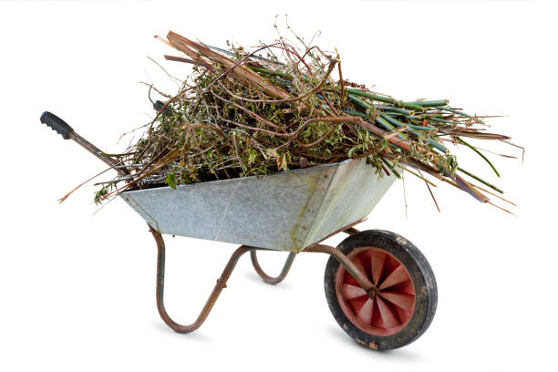 full garden wheelbarrow - kruiwagen stockfoto's en -beelden