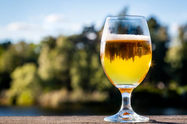 A full glass of tasty golden beer with reflections in the glass against outdoor summer nature background. stock photo