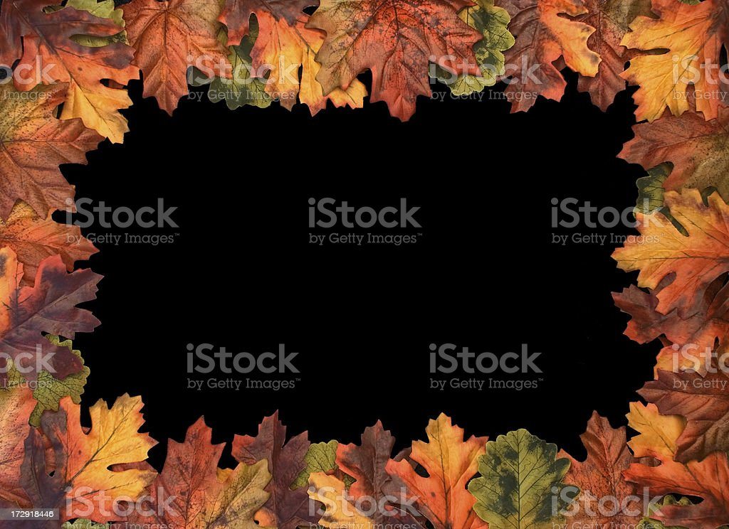 Full Leaf Border royalty-free stock photo