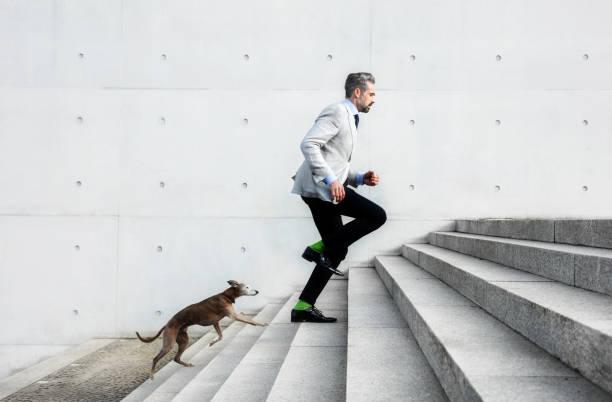Full length of businessmen running on steps with dog picture id667320192?b=1&k=6&m=667320192&s=612x612&w=0&h=9ym6vgfbu6urflym njqpiomguujtk1et870dwsc52g=