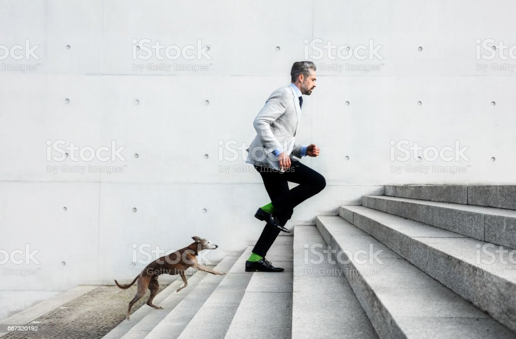 Full length of businessmen running on steps with dog stock photo