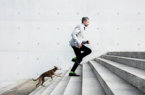 full length of businessmen running on steps with dog - loyauté photos et images de collection