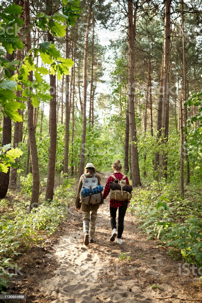 Full length of female explorers hiking in forest Full length of female explorers hiking in forest. Rear view of young friends are walking with backpacks. They are spending weekend together. 20-24 Years Stock Photo