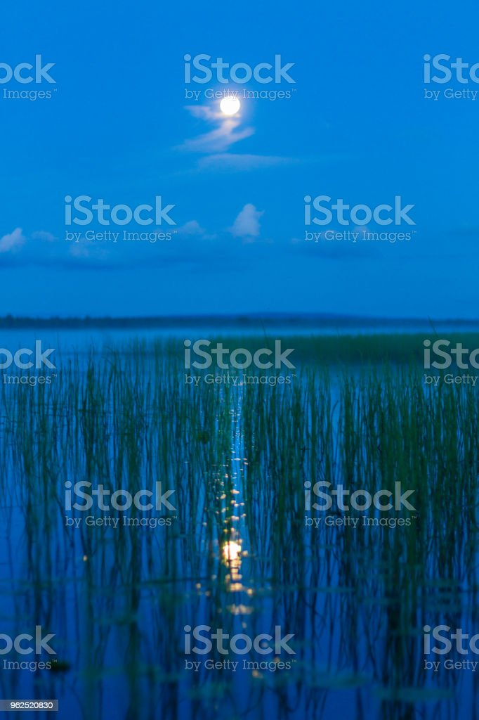 full moon and lunar track on the night lake - Royalty-free Beach Stock Photo