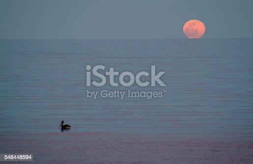 Moonrise over the Sea of Cortez. Baja California Sur, Mexico.