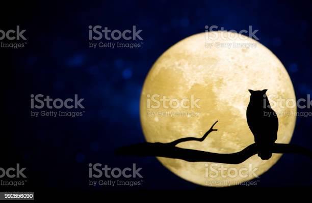 Full moon in the night sky picture id992856090?b=1&k=6&m=992856090&s=612x612&h=aowcc9i0jx0ew0m0lff2jspy6rzynixc4hfuunzcb4s=