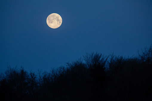 Full Moon in the horizon before becoming a super moon in the same day