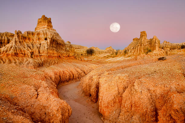 Full moon over desert landscape dawn Outback landscape with delicate structures at Red Top along the large lunette formed by wind and water erosion along a dried up lake outback stock pictures, royalty-free photos & images