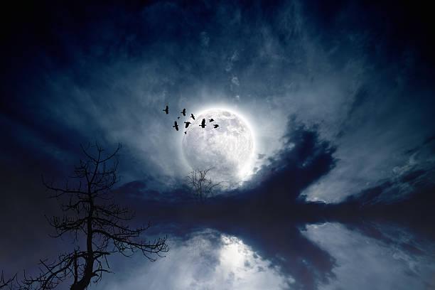 Full moon picture id450718213?b=1&k=6&m=450718213&s=612x612&w=0&h=1492  h3ismbmyvnxuls7ho7 zxvyb lh2rzj0faqee=