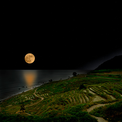 Full moon rising over the Rice terrace fields and sea.