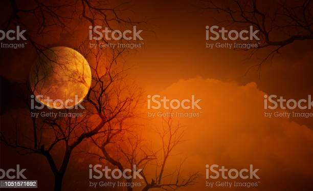 Full moon with halloween background picture id1051571692?b=1&k=6&m=1051571692&s=612x612&h=ctdwomvne8 swn oudjgc0e9lpy8v3p8e4a2jsoau m=