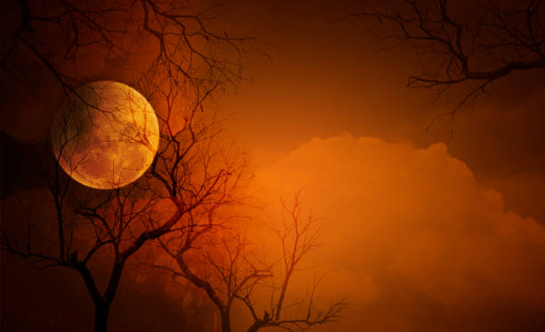 Full moon with halloween background picture id1051571692?b=1&k=6&m=1051571692&s=612x612&w=0&h=ru5mhagr6tku4 k8vn mc9ieip7n4zkg9t8nxrqilwi=