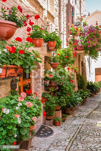 Full of flower porch in small town in Italy, Umbria.