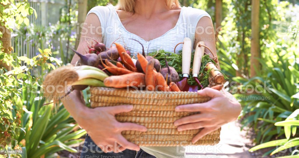 Full of vitamins and minerals stock photo