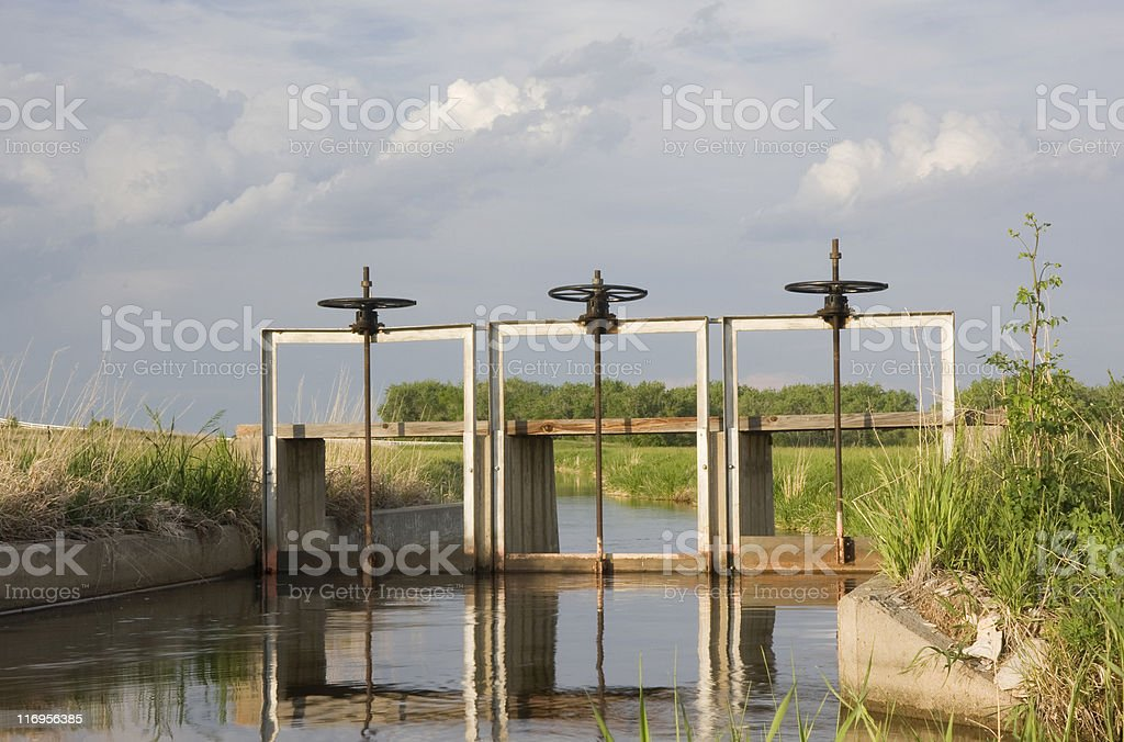 full of water irrigation ditch with three headgates stock photo
