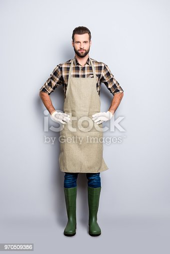 istock Full size body snap portrait of virile harsh  gardener with stubble, hairstyle, holding arms on waist, isolated over grey background 970509386