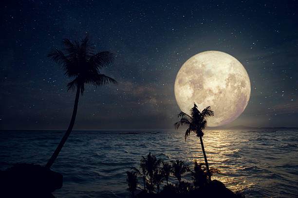 fullmoon and beach - romantic moon stock photos and pictures