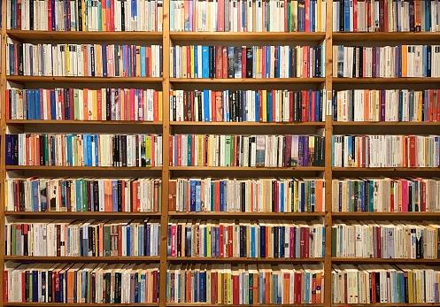 Fully packed bookshelf