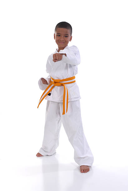 fun activity - martial arts gerville stock photos and pictures