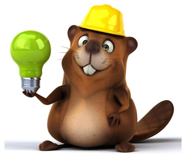 Fun beaver - Photo