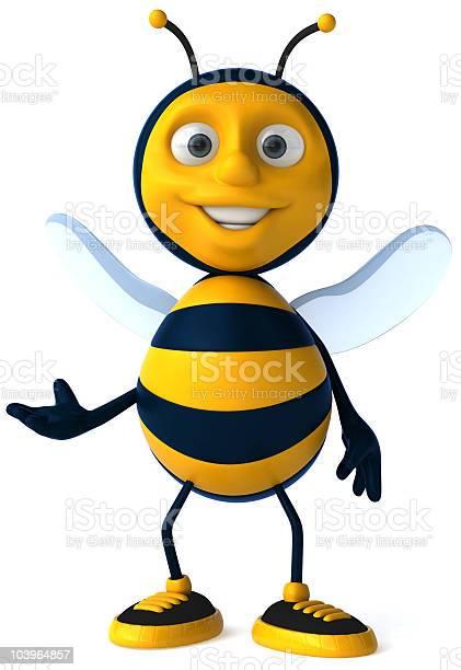 Fun bee picture id103964857?b=1&k=6&m=103964857&s=612x612&h=4yihf9rrukshmvfogmwppyfnqxfx4aavv8mmw88mqrg=