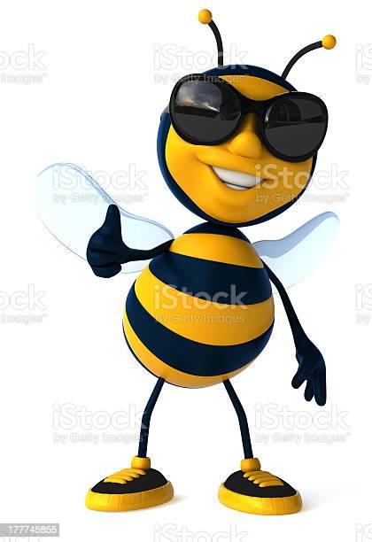 Fun bee picture id177745855?b=1&k=6&m=177745855&s=612x612&h=wto6anytrdnrc9ol76ub5yheqa8c6pimrxbhqsm iig=