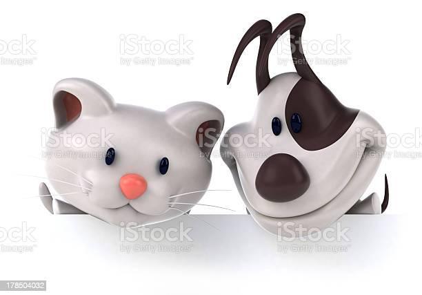 Fun cat and dog picture id178504032?b=1&k=6&m=178504032&s=612x612&h= gwvn4a1at0s5gp2 8goijoxqggowtdtm jkgrepgho=