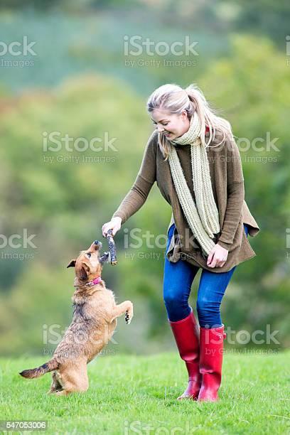 Fun dog walk picture id547053006?b=1&k=6&m=547053006&s=612x612&h=dwluib5dytkozdbvvcnyraa4hlxzn7cnrgyjkukwgaq=