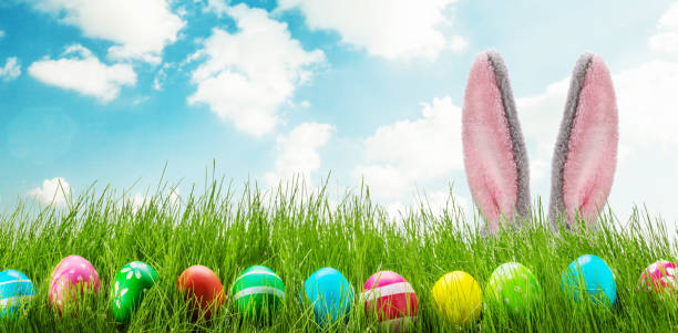 Fun easter rabbit ears eggs and grass stock photo