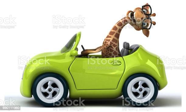 Fun giraffe picture id690111960?b=1&k=6&m=690111960&s=612x612&h=kf05ncbbxx3y xobyffouiop6xr25oaemhycw8pwhoa=