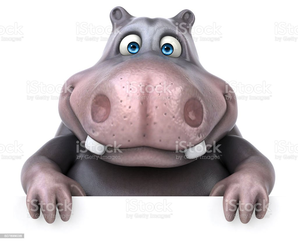 Fun hippo stock photo