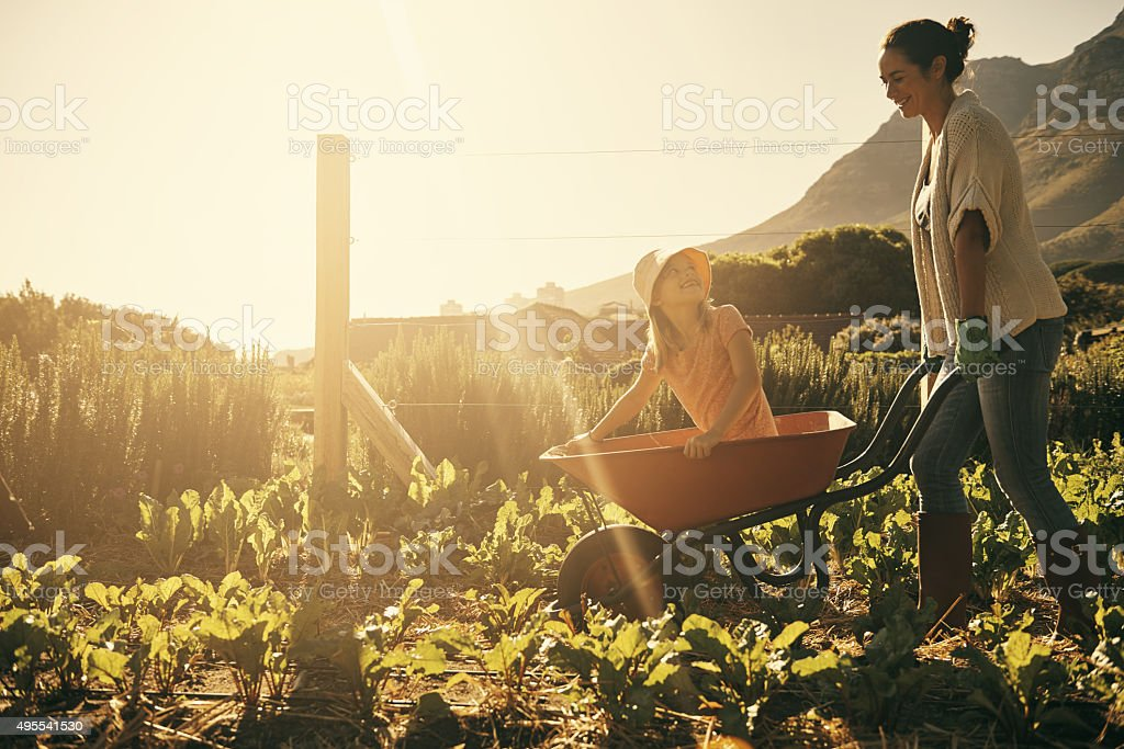 Fun in the fields stock photo