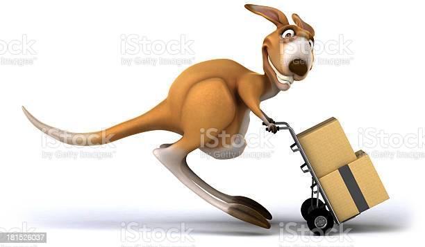 Fun kangaroo picture id181526037?b=1&k=6&m=181526037&s=612x612&h=jemqqx6g0ag6xm2e2nbo8d44cdqyvlb3w8 tshix9rq=