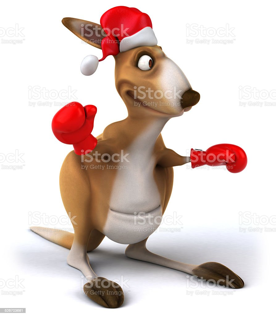 Fun kangaroo stock photo