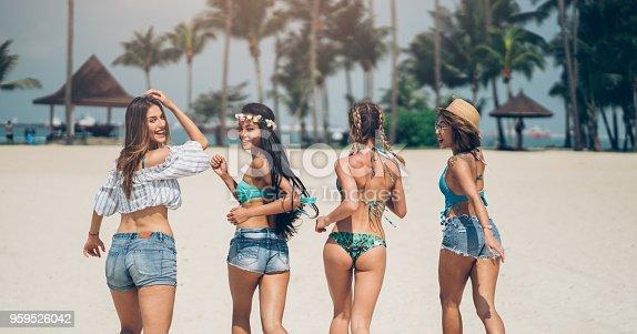 istock Fun on the beach 959526042