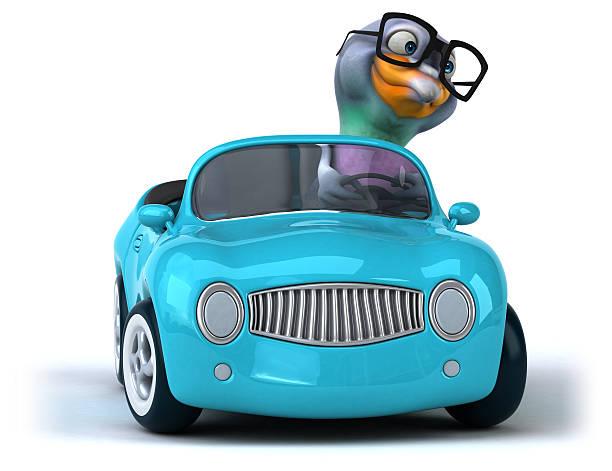 Fun pigeon picture id510689120?b=1&k=6&m=510689120&s=612x612&w=0&h=oqav0bbselcqxrgkw1lirleuprvzoo5stxvctoi92nu=
