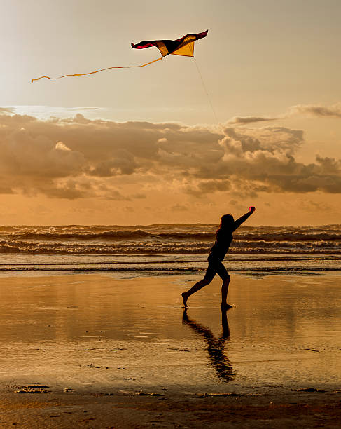 Fun with a kite at sunset. stock photo