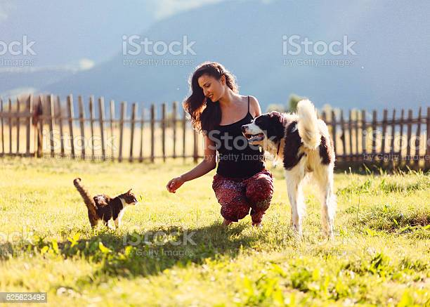 Fun with cats and dogs in the sunny outdoors picture id525623495?b=1&k=6&m=525623495&s=612x612&h=xgdyppgamlyiau hgfuq2f s9kdkclbgh4vagxzcul4=
