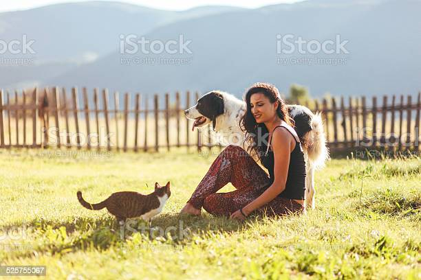 Fun with cats and dogs in the sunny outdoors picture id525755067?b=1&k=6&m=525755067&s=612x612&h=x8zc6y w6mnpllh r9yyk1modyud7dbitl3p3om8hp0=