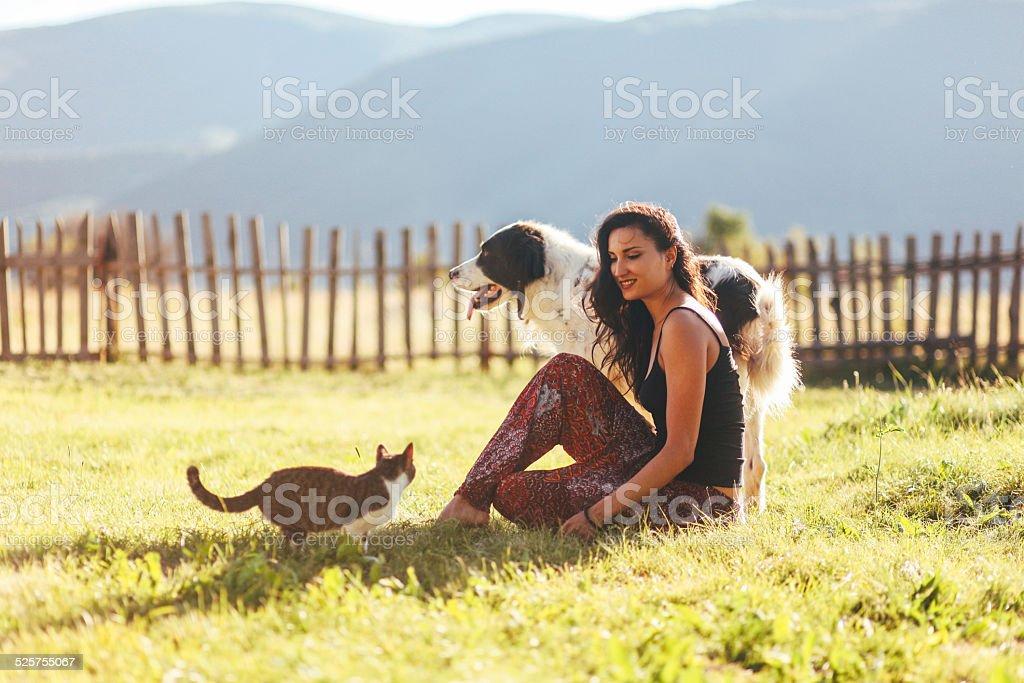 Diversión con los gatos y perros en la soleada al aire libre - foto de stock
