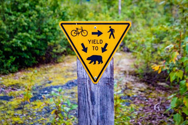 Fun yield to bears sign warning on trail stock photo