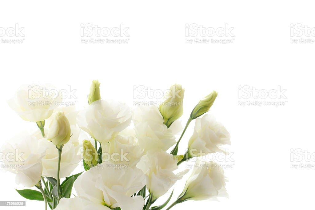 Funeral Blumen – Foto