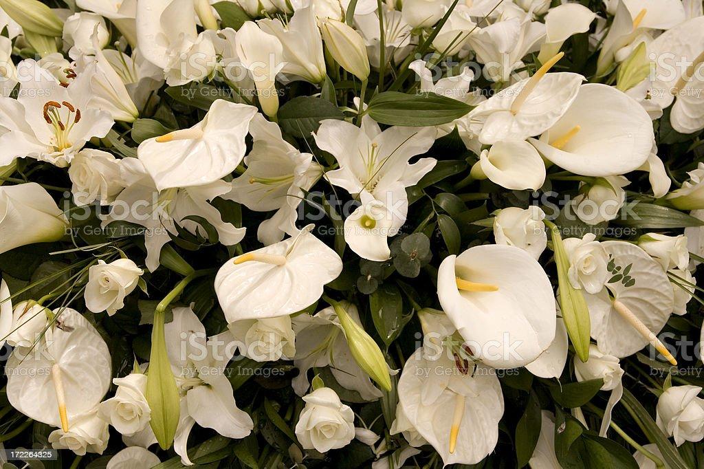Funeral Blumenweiße Lilien Stock-Fotografie und mehr Bilder von ...