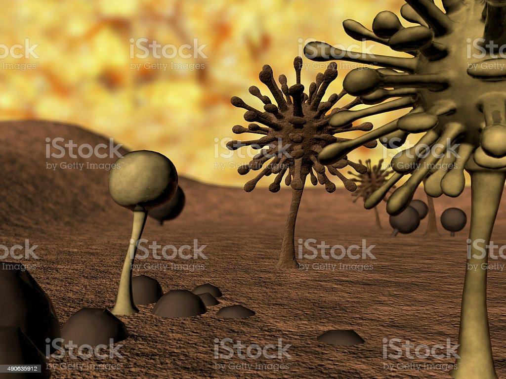 fungus, Mold stock photo